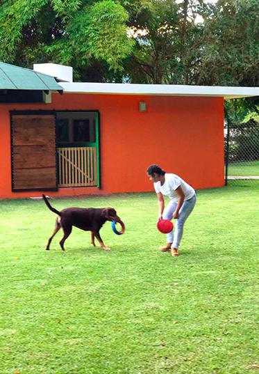 La Estancia, Hotel para perros