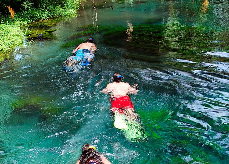Tour de snorkel en Las Estacas